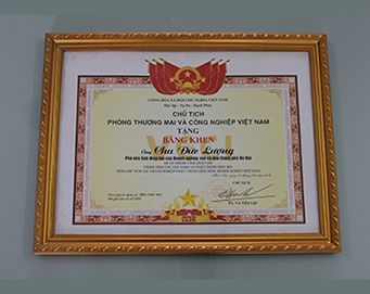 "Merit of the President of the Vietnam Chamber of Commerce and industry for: ""outstanding achievements in construction and development of the Association, to contribute actively to the career of Vietnam business community"""